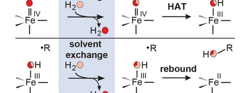 Evidence for modulation of oxygen old pub3